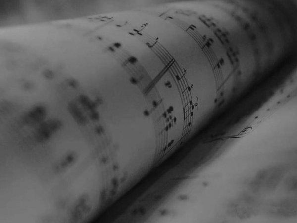 """""""La musique est avant tout la base de l'existence pour apaiser nos esprit ravagés par des idées confuses."""""""