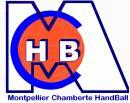Photo de Chamberte-Handball
