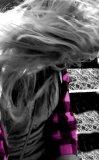 Photo de rosa-prinzessin
