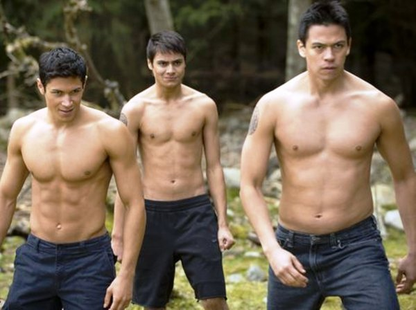 Taylor Lautner gay : info ou intox ?
