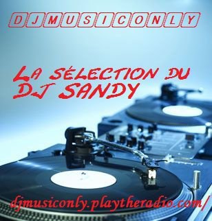 1er mars 2011, création de DJMUSICONLY, la première webradio généraliste, 100 % DJ HITS...
