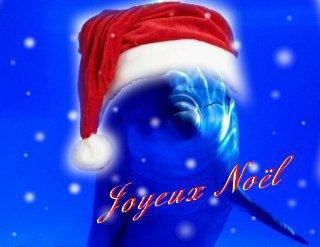 joyeux noel 2010 a tous