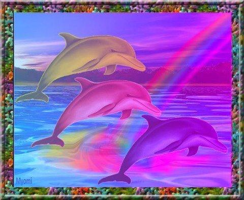 trois dauphins jaune,rose et mauve avec un arc en ciel