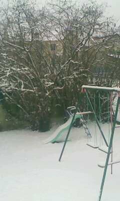 Mon jardin est tout blanc *o*