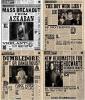 Les affiches de la Gazette du sorciers