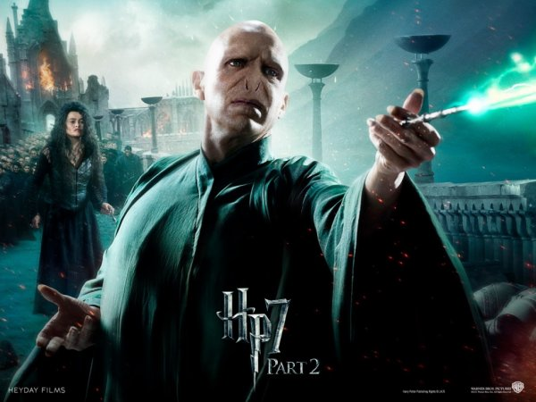 Lord Voldemort ( HP 7 partie 2 ).