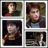 Montage de Daniel Radcliffe.