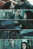 The Twilight Saga (1)