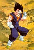 Pictures of dragonball-goku1