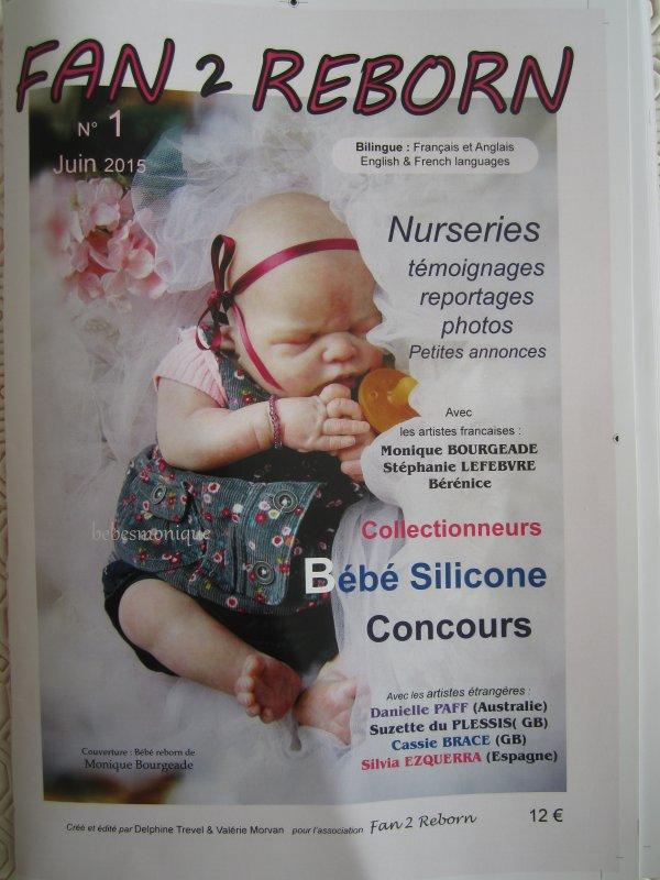 # Nouveau magazine : Fan 2 Reborn #