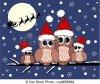 Joyeux Noël à toutes mes copinautes.