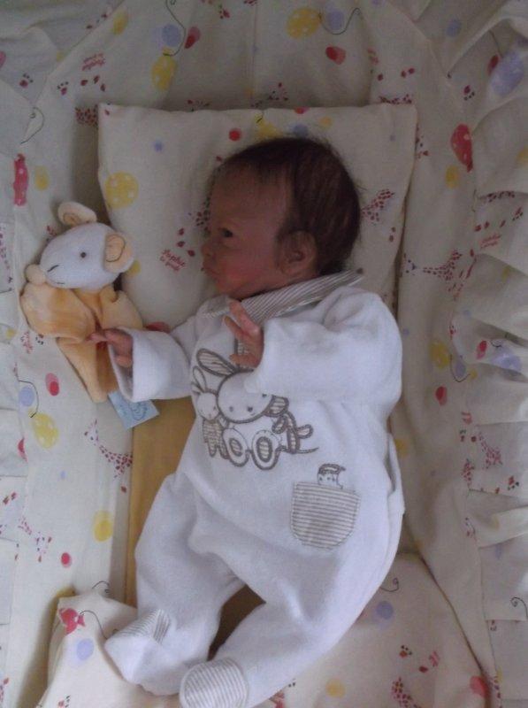 # Premier bébé de 2018 : Yanis #