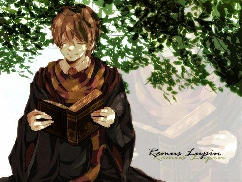 Student Remus Lupin #3