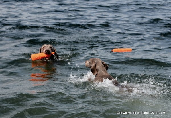 Harper à l'eau avec sa petite fille Juicy