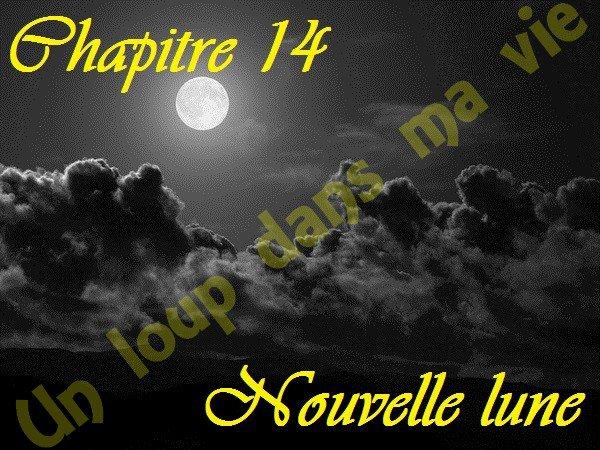 Chapitre 14 : Nouvelle lune