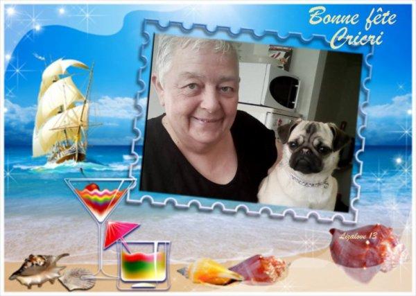 bonsoir a tous et oè quand on vas a la plage mes bon je suis cuite et merci a lizalove13 pour ma fète bisous a tous
