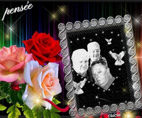 merci a mes amies insomnie et Philippe de face pour sa jolie rose