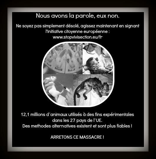 STOP A LA VIVISECTION !!