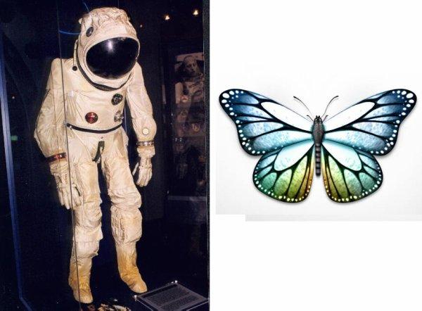Le scaphandre et le papillon