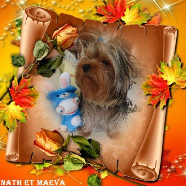 Maeva remercie tous ses Amis (es) pour les messages et beaux cadeaux pour son anniversaire. Bisous