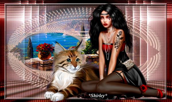 kdo de Shirley