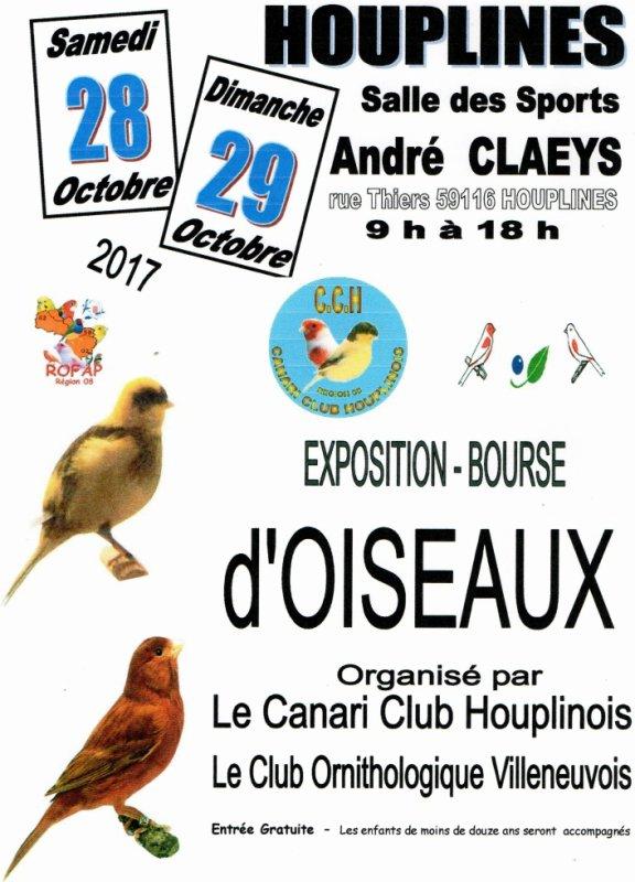 EXPOSITION     DE CANARI   A HOUPLINES