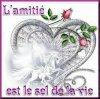 l'amitier