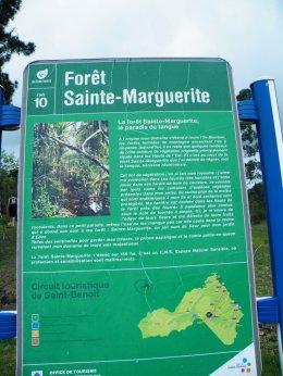 FORÊT STE-MARGUERITE LE 23 OCTOBRE 2011