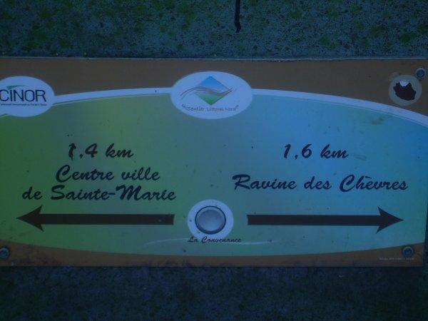 RANDO SANTE RAVINE DES CHEVRES / BOIS MADAME DU 7 MARS 2012