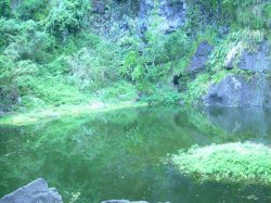 27 JANVIER 2013 : Rando Santé Tour du Bassin Vital et le Moulin à eau à Savanah St-Paul.