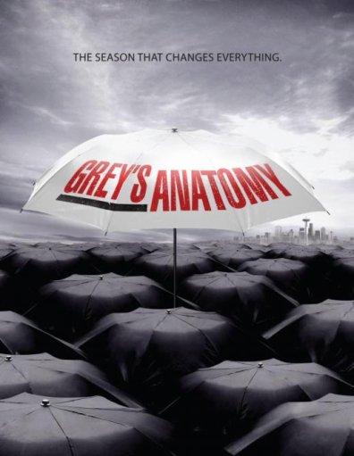 GREY'S ANATOMY: LA SAISON QUI CHANGE TOUT