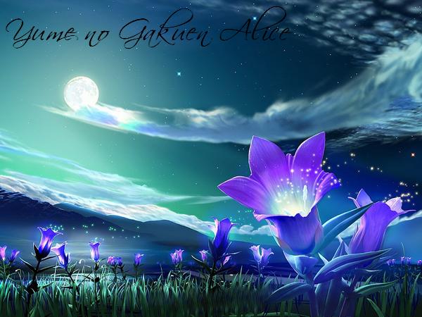 Yume no Gakuen Alice, que si l'on traduit en français « L'Académie Alice du Rêve »