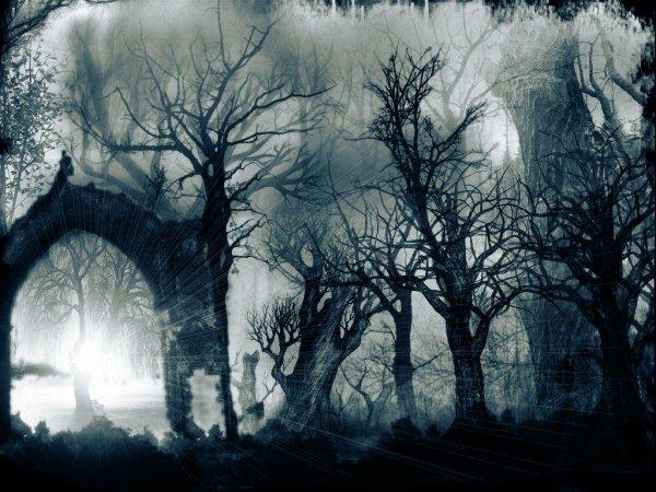 Un portail vers l'inconnu