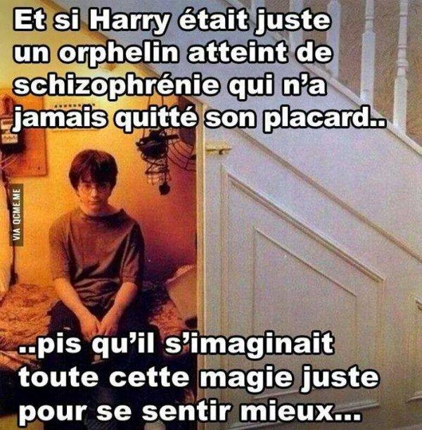 La vérité sur Harry Potter.