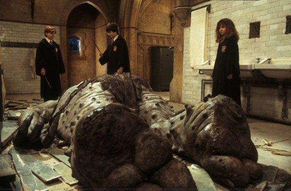 Si vous vous demandez pourquoi les filles vont toujours aux toilettes à plusieurs... Rappelez vous que dans Harry Potter, Hermione y a été seule et elle s'est fait attaqué par un troll.