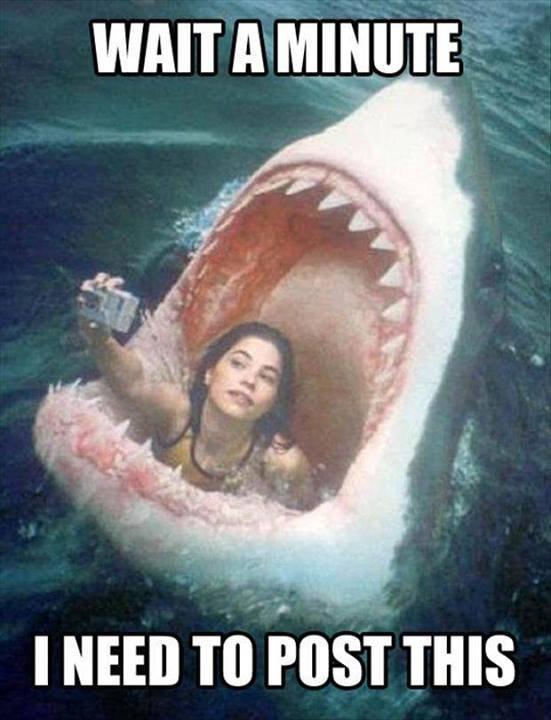 On voit de moins en moins de perche à selfie. C'est mauvais signe, un objet encore plus con doit se préparer quelque part.