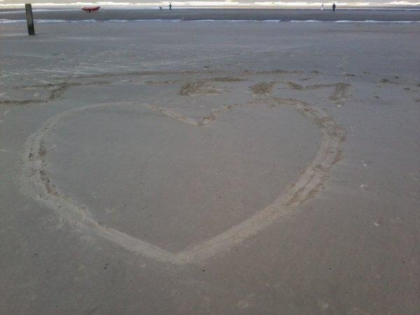 Ne Quitte Jamais Celui Que Tu Aimes Pour Celui Qui Te Plaît , Car Celui Qui Te plaît Te quittera Pour Celle qu'il aime...♥