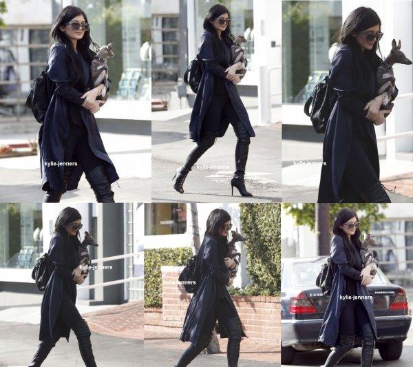 le 23 février 2015 - Kylie et sont chien en direction de Fred Segal à West Hollywood