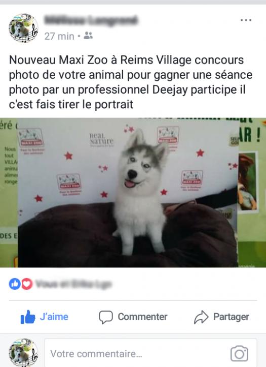 Concours a MaxiZoo