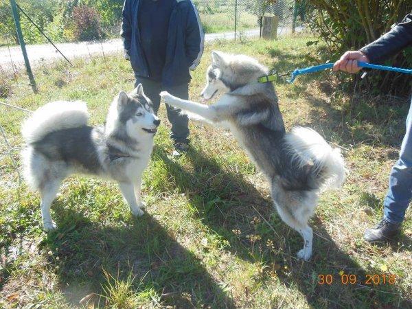 Deejay et sa soeur Nanouchka merci Myriam pour les photo ^^