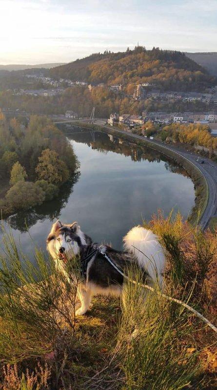 Point de vu  la roche d'uf (Fumay dans les Ardennes françaises)
