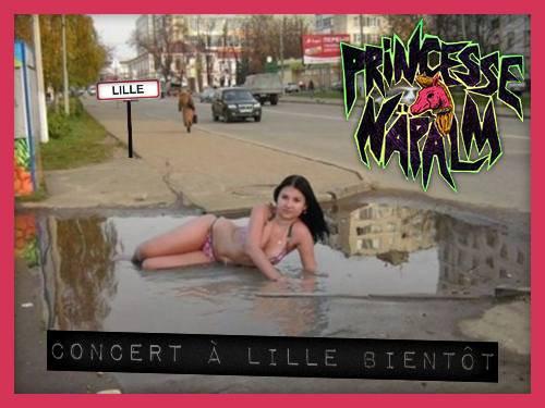 Concert à Lille bientôt