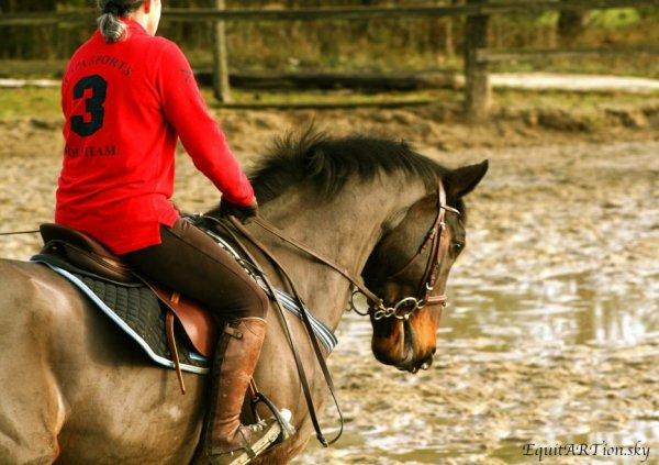 Entrer dans la foret sans déplacer un brin d'herbe  Entrer dans l'eau sans rider la surface  Dresser un cheval sans utiliser la force .
