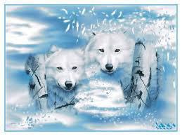 les amoureux des loups
