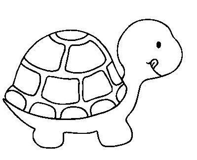 Tortue...