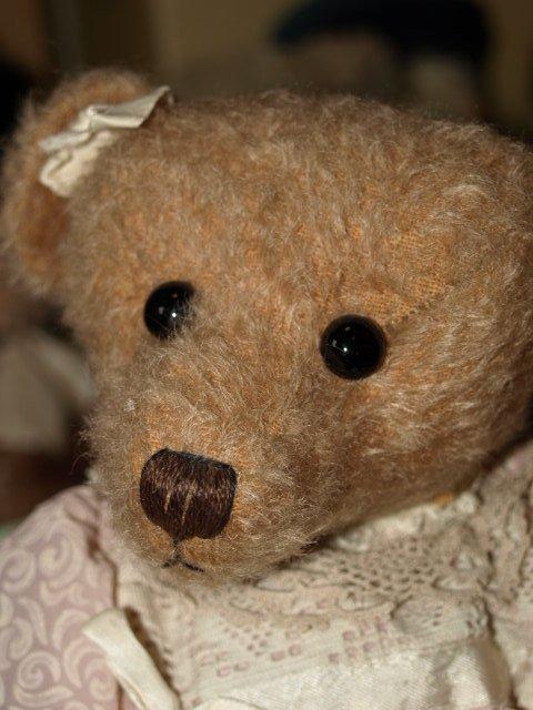Portrait de quelques ours d'artistes