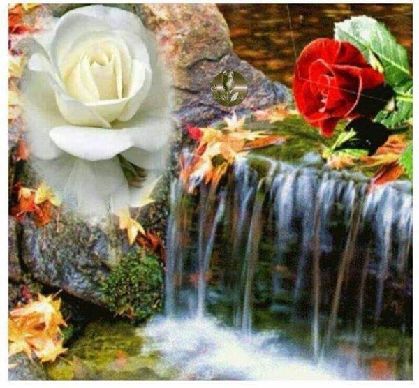 tu peut empercher     la riviere        de couler met    pas de t  aimer!!!!!!!!!!!!!!!!!!!!