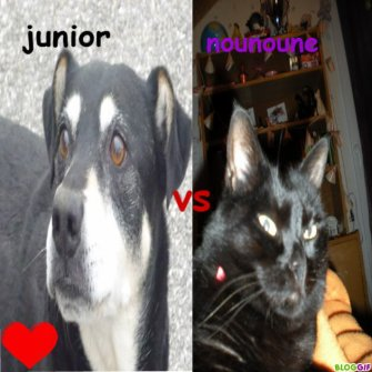 Junior Vs Nounoune Orane Vs Charline
