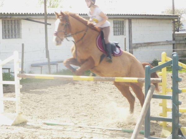 Mon Champion ♥