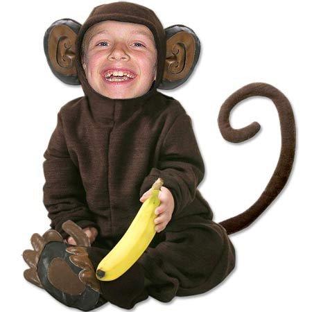 Petit singe rigolo bienvenu chez l dany - Petit singe rigolo ...